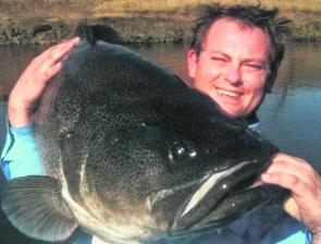 Lee Townsend with his massive Murray cod which took a spinnerbait in the Molonglo River in Canberra.