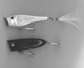 A Berkley Frenzy Popper top and a small Producer Salty Popper.