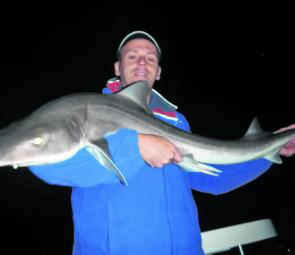 Rod Gillam caught and released this beautiful big gummy shark on fresh squid.
