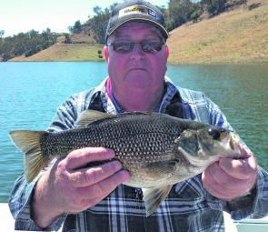 This Scone local used a plastic to catch this healthy Glenbawn bass.