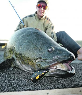 Jayden Mutimer pulled this 112cm cod on the first Mazzy Vibe Fortes in the country.