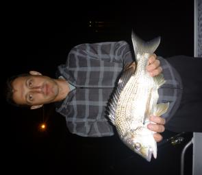 Big bream are in great numbers at present. George scored this 40cm specimen as jewfish by-catch on a night charter.