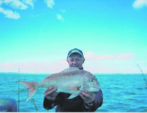 Snapper have been a feature of offshore waters.