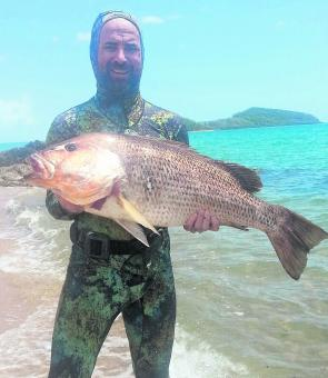 There has been some monster golden snapper around, like this fish nailed by Matt Coleing recently.