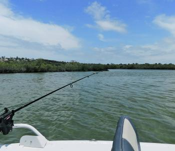 Setting a rod, low and flat to the water will mean less resistance to fish like whiting and bream.