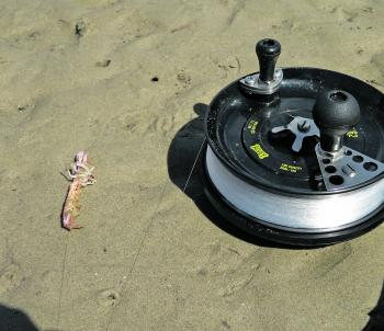 Make sure your bait sits naturally on the hook with the point exposed.