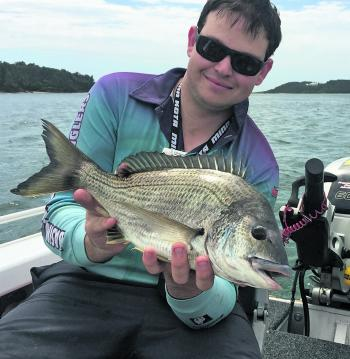 Chris Neville with a quality Shoalhaven River bream that fell victim to a live nipper.