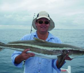 School sized cobia like this one will be on offer in April for wreck fishers.