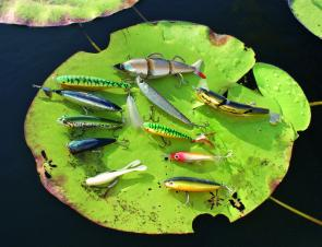 A wide range of surface lures are available and each have their advantages in certain situations in the cooler months.