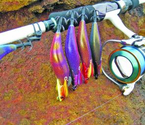 The awesome squid fishing through winter will only get better as the water clears during spring. Great new toys to try lare these new Dartmax jigs and the Emeraldas Egi reel and Interline Rod