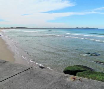 The Alley at Cronulla Beach is worth a shot for bream and whiting using nippers, beach worms or blood worms on a falling tide.