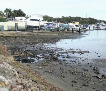 The back end of Woolooware Bay is worth a shot at high tide, but watch out for the oyster-covered rocks.