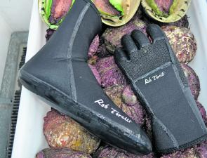 Quality booties and gloves are essential for winter diving.