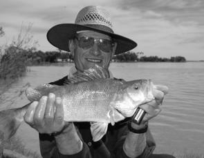 Lake Charm and Lake Boga are producing quality redfin for anglers using bait. Early starts have been best.