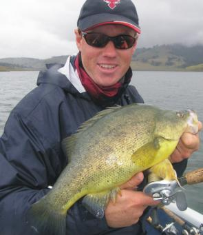 This healthy golden pounced on a Jackall TN60 cast to shallow weeds when fishing for bass.