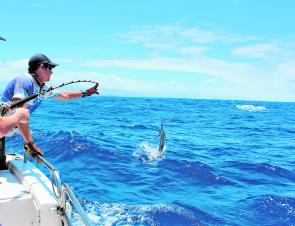 Deon Nourse goes for the leader on another black marlin.