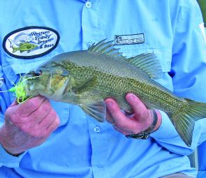 While May is a time when you should fish lures more slowly, bass will often surprise by smashing a buzzbait moved at a steady pace across the surface.