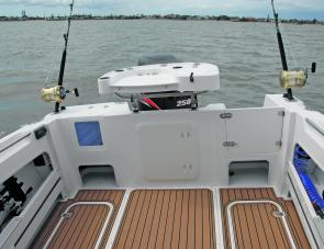 The transom module shown here is but one of three offered to buyers of the Haines Signature 650F Hard Top.