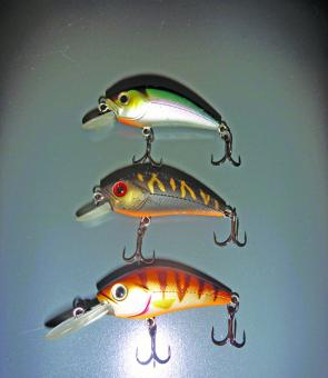 Look out fish! These S Hornets are proving deadly on bass and bream.