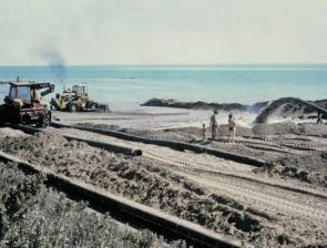 Dredging and pumping millions of tonnes of the Bay seabed to rebuild beaches from St Kilda to Seaford in the 1980s didn't do shellfish beds much good.