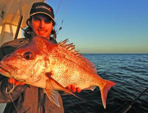 Snapper like this are a real option when floatlining.