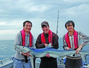 Mako sharks are great fun, but you might need a crew to land a big one.