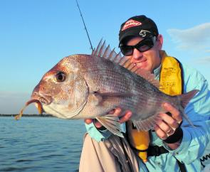 Smaller pinkie snapper should start to make more of an appearance across the inner reefs this month.