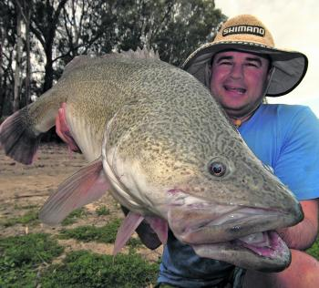 Gareth Lynch with a typical Murray cod most anglers will be trying to land this season.