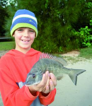 Bream are a great target species to get the young ones involved.