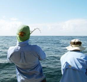 This is what we all want to see on offshore trips! Good sea conditions and bent rods!