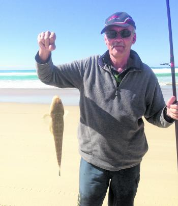 Noosa North Shore has produced lots of medium sized flathead.