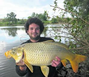 Carp are regarded as pests but can offer some great sport on light tackle. They range from the tidal water at Wisemans Ferry all the way to the headwaters.
