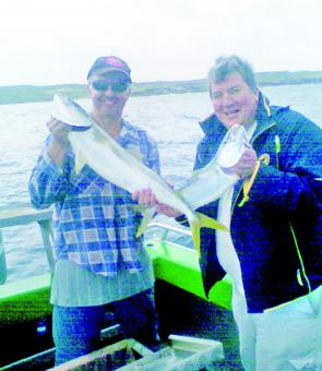 Kingfish are easy to target as long as you can find good bait.