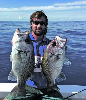 Jarrah Fitzgibbon with a couple of beautiful pearl perch caught out wide from Ballina.