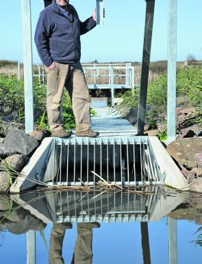 At last! A fish ladder could see more estuary perch in the lower reaches of the Barwon.