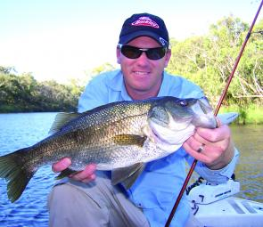 Tournament specialist, Brad Hodges, has encountered numerous estuary perch since he began targeting bream on lures.