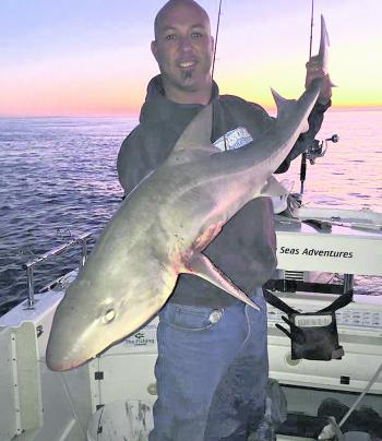 Paul Anca Barton and Jay Furniss with a nice big gummy shark caught at dawn.