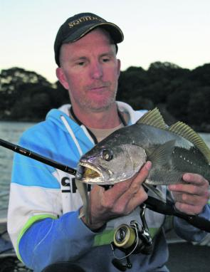 Mulloway have been steady, though the average size is usually around 1-3kg. They're still fun on light gear, though.