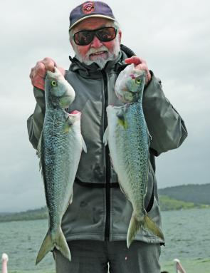 Ken Henderson with some prime examples of Georges Bay Australian salmon.