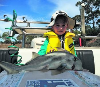 Koby with a magnificent top end elephant fish!