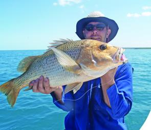 Dirk Wendt with a typical reef fingermark from south of Weipa. Even one fingermark this size makes for a good trip.