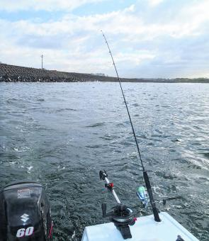 Trolling the wall on the western side of Yarra Bay is worth a shot for tailor, salmon and kingfish.