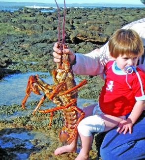 Rupert Flanders and his arch nemesis – the crayfish.