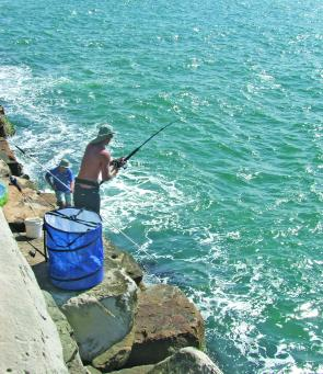 A good gaff man makes landing longtail tuna from the Iluka breakwall easy.