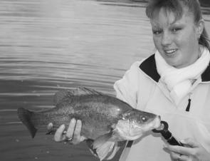 This is what most anglers will be chasing this month: Good-sized golden perch and lots of them, Sharon cast a spinnerbait from the bank for this one, of average size for Blowering Dam.