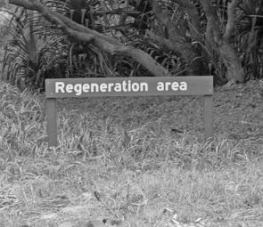 Regeneration areas have been set up around D.I. to ensure that it remains a great location for many years to come.