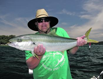 Kingfish fishing has become a bit more consistent, recently.