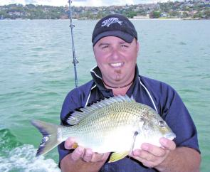 Jason Gaucci caught this Harbour bream.