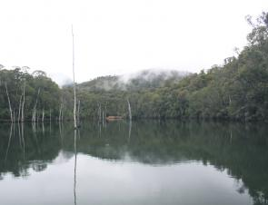 Winter time is trout time at Lake William Hovell and dull overcast days are the best times to target trout.