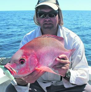 Nannygai will be on the bite through November and can be targeted with success using large soft plastic lures.